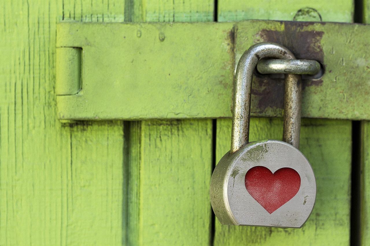 un lucchetto con un cuore sopra un cancello di legno verde