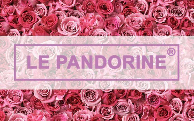 logo Le Pandorine su sfondo di rose